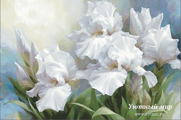 ... цветы, луговые цветы, сад, тюльпаны: uytmir.ru/rukodelie/vyshivka/katalog_shem/cvety/page/5